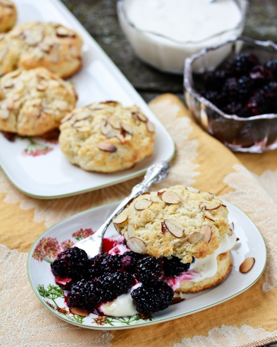 Blackberry Bourbons Shortcakes with Whiskey Whipped Cream