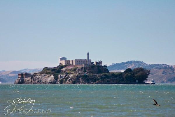 San Francisco - Alcatraz | ASpicyPerspective.com